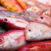 8 Types of Fish You Shouldn't Eat If You Want To Live Long