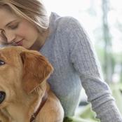 قصة.. اشتريت ثلاثة كلاب لحراسة المنزل أثناء السفر..ولكن زوجتى استغلت الكلاب فى محاوله قتلى