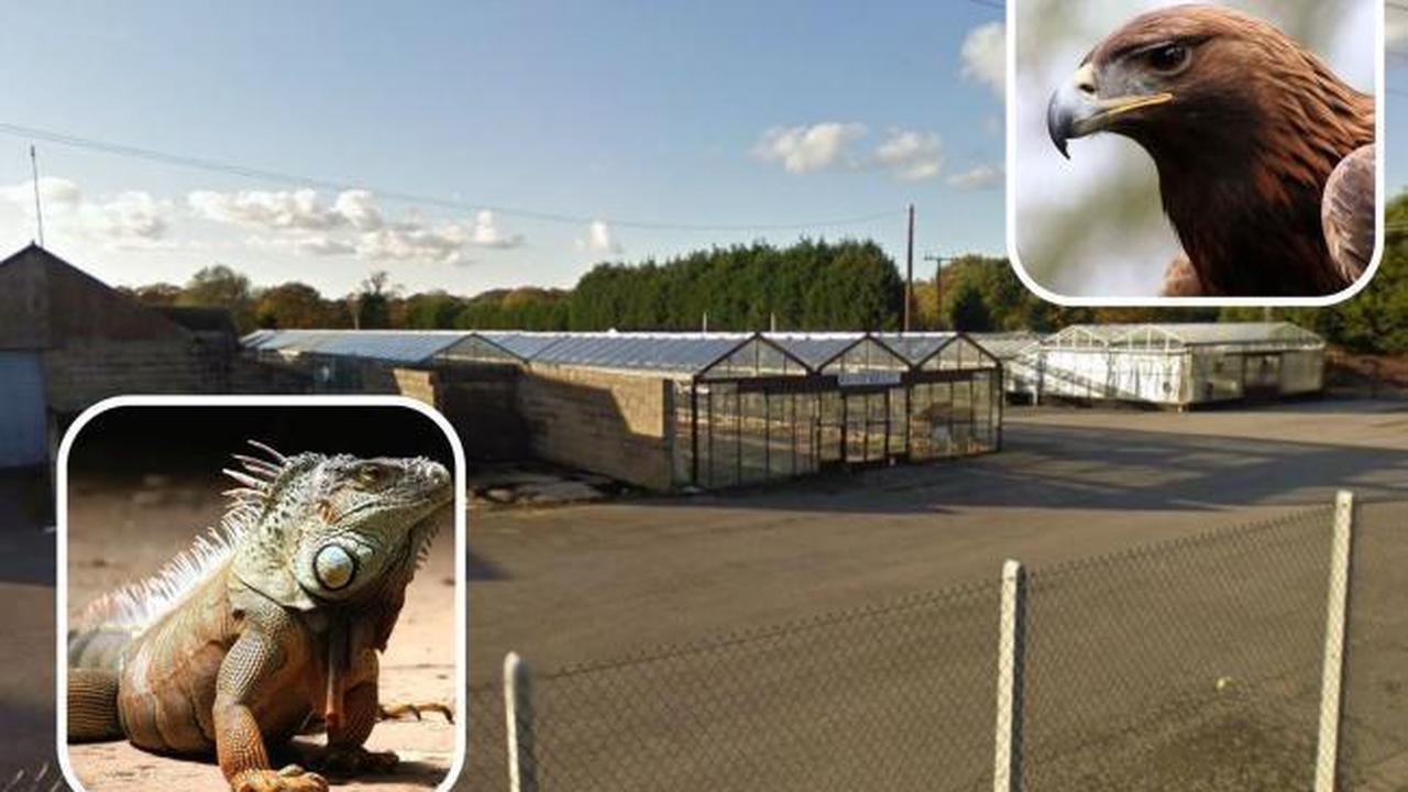 Council blocks garden centre's plan for reptile and bird zoo