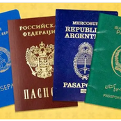 Reason Why There Are Only Four Passport Colors In The World