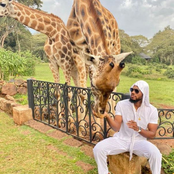 See The Reply Prince Gave A Fan Who Asked Him Where Kenya Park Is At Lagos That Sparked Reactions