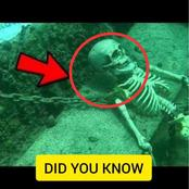 'Enlighten Yourself': See Top 23 Mysterious DID YOU KNOW Facts That You Should Know [Photos]