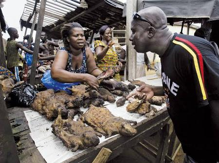 See reasons why you should quit eating Bushmeat and look for alternatives