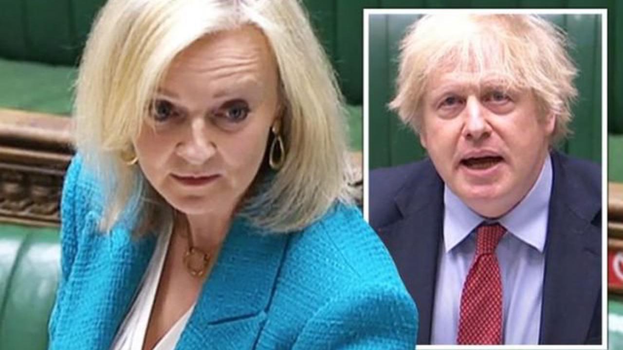 Liz Truss für PN! Brexit-Superfrau auf Führungsmarsch als Boris am Rande   Großbritannien   Nachrichten