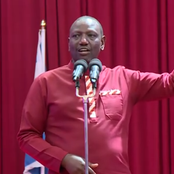 Youthful MP From Odinga's Backyard Who is Ruto's Biggest Political Asset Ahead Of 2022