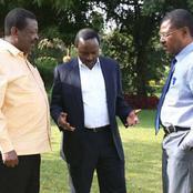 Blow To Mudavadi, Kalonzo And Wetangula as Amollo Reveals Why Raila Won't Endorse Them