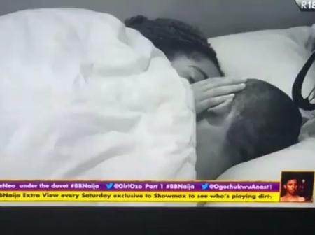 BBNaija: Laycon Interrupts Lovebirds Lilo And Eric While Kissing