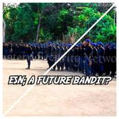 Will ESN Turn Into Another Set Of Bandits Due To Army Attacks? (See 2 Possibilities)