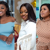 Who is the top best dressed lady celebrity in Ghana? Make your choice from these 12 stunning celebs