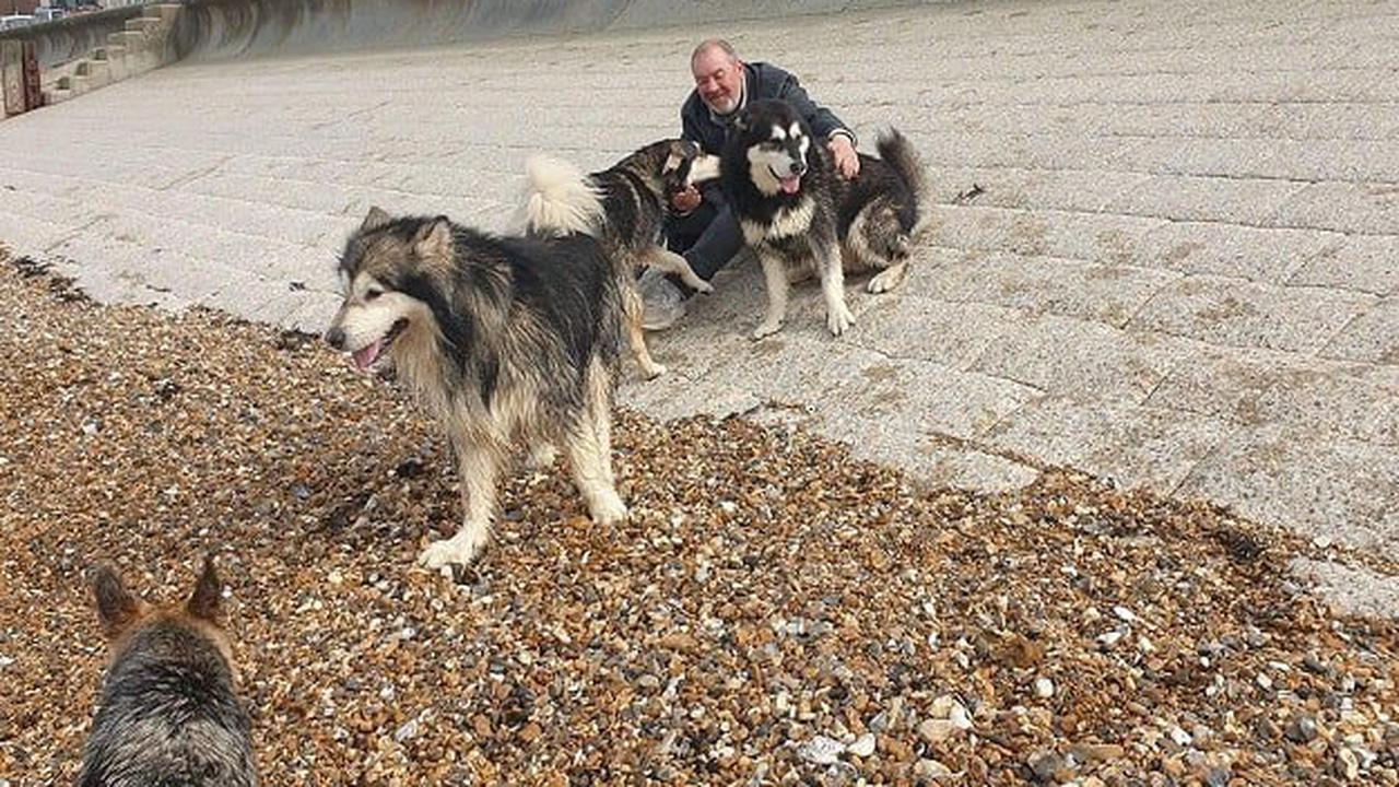 Man and two dogs left homeless as moving date changes hours before move