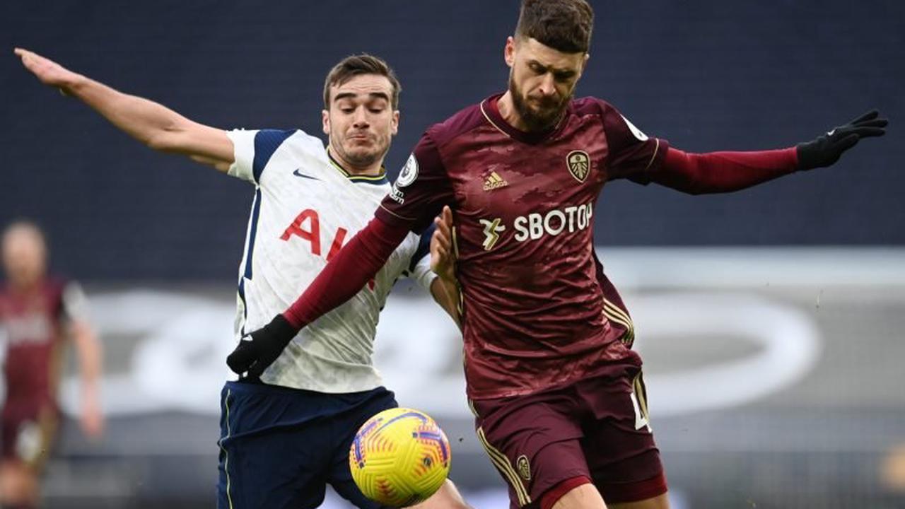 Tottenham Hotspur: Fans react to Harry Winks claim