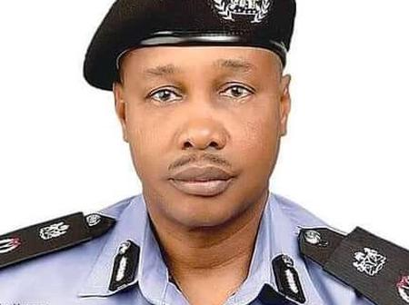 President Buhari Appoints Yobe State-born Deputy Inspector General As New IGP