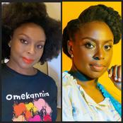 People Promised To Beat Me Up, Sent Me Death Threats Because Of Chimamanda's Feminism Ideas - Lady