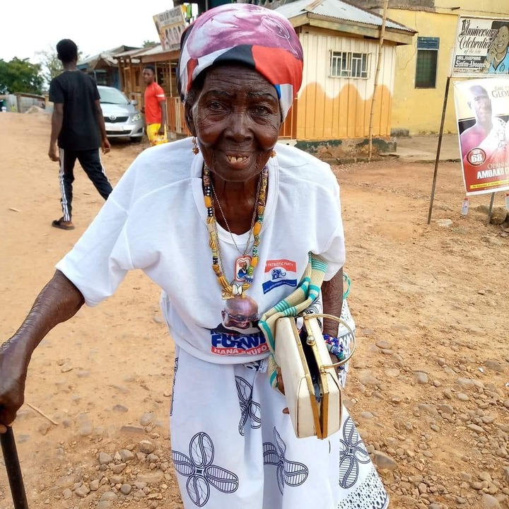 74b266bb435d06b921072fb457342b81?quality=uhq&resize=720 - Photo Of Aged Die-Hard Fan Of Nana Addo Rocking Her NPP Outfits Beautifully Goes Viral