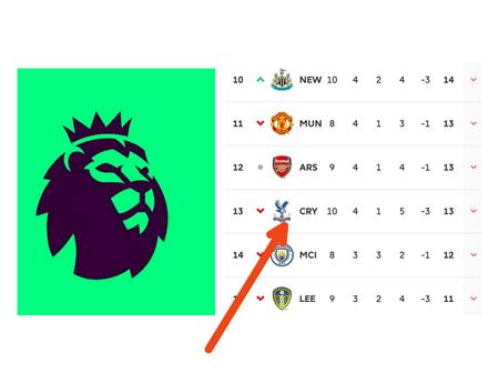 After Newcastle's 2-0 victory; see how Crystal Palace dropped in the EPL table.