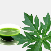 Do you want to get rid of malaria and skin blemishes? Use this leaf