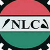 Ondo LG Chairman's Accusation Against Workers, Plot For Retrenchments —NLC