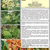 Promotion of protected trees and eradication of invasive trees