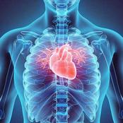 Men With a Resting Heart Rate of 75 bpm Can Die Early-Study.