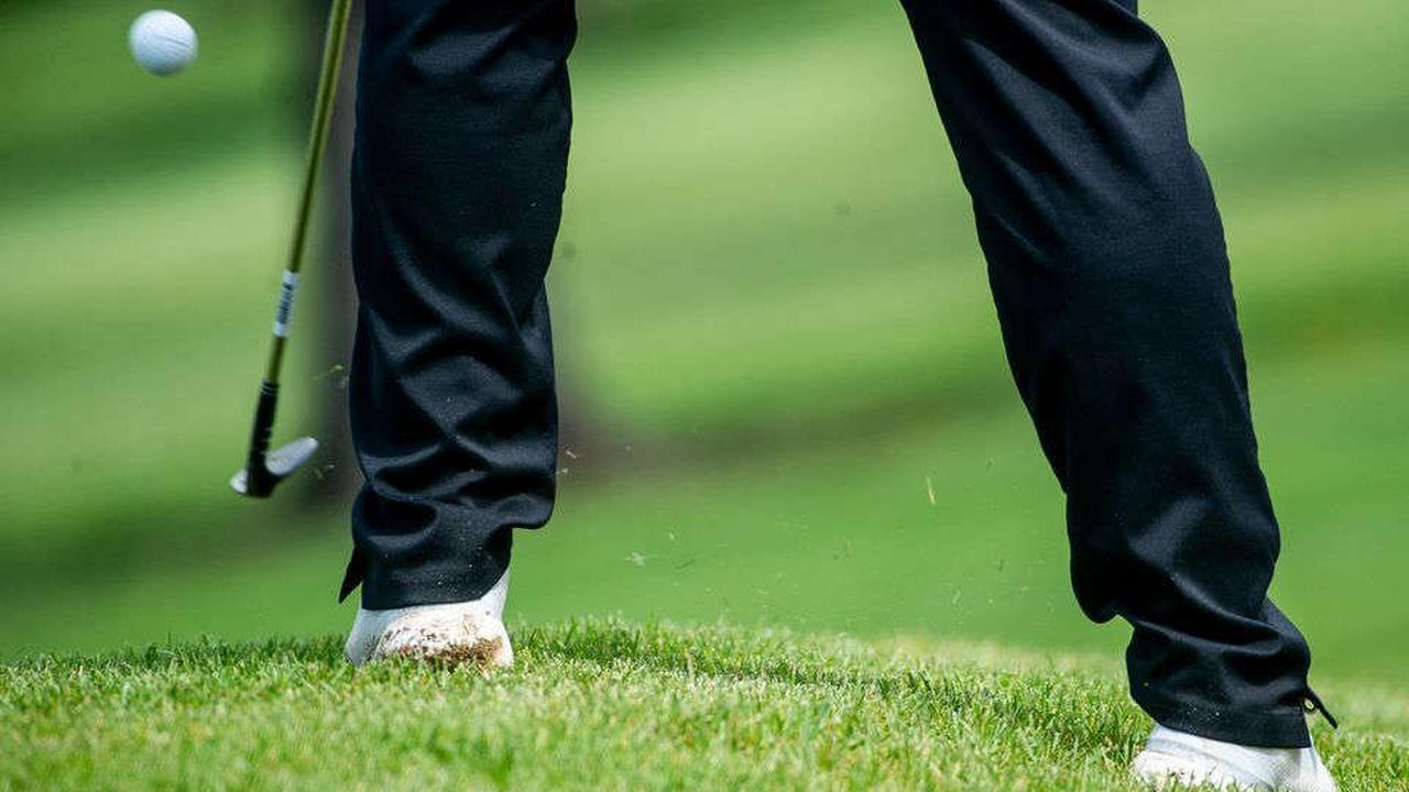 Four Jackson-area high school boys golfers earn All-State honors