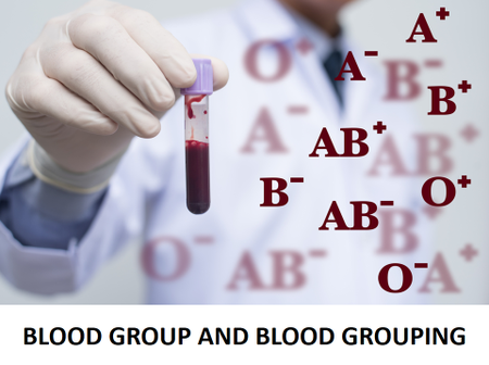 Know Your Blood Group And The Types of Diseases You Are At Risk of Getting Infected - Don't Ignore