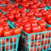 Do Not Eat Tomatoes If You Have This Health Condition, Please Don't Ignore