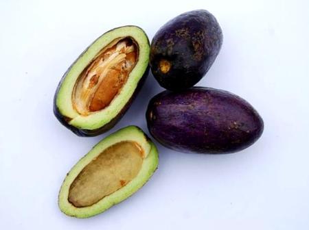 Top 10 des choses à savoir sur le Safou, la prune du Congo