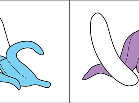 These Funny Illustrations Classify People Into Two Types, Which One Are You?