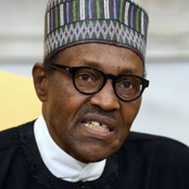 An Open letter to President Buhari after he said that his Government wouldn't negotiate with Bandits
