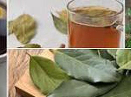 Boil bay leaves with Ginger and lemons, Drink it to enjoy this health benefits.