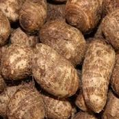 What's this in your home language? Check out the amazing benefits of Amadube.