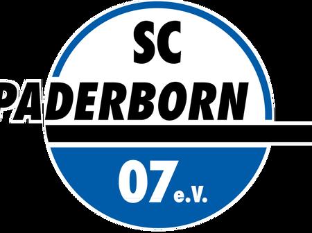 SC Paderborn's incredible roller coaster ride in Bundesliga