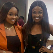 Meet Jackie Appiah's Twin Sister Whose Beauty Has Got Ghanaians Talking On Social Media