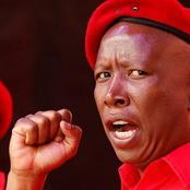 Happy birthday Messages Pour in For Julius Malema
