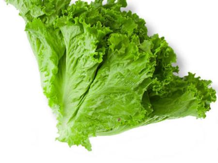 How To Never Run Out Lettuce.