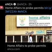 Home affairs to probe permits