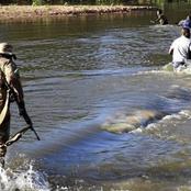 Zimbabweans caught Using Creative ways to enter SA / opinion