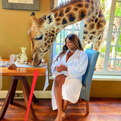 Check Out What These Photos Of Bbnaija Dorathy Tell Us About Giraffes