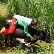 Kenyans Call For The Arrest of Gospel Musician For Allegedly Abusing Animals
