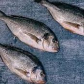 Why A Woman Left Her Husband And Started Selling Fish