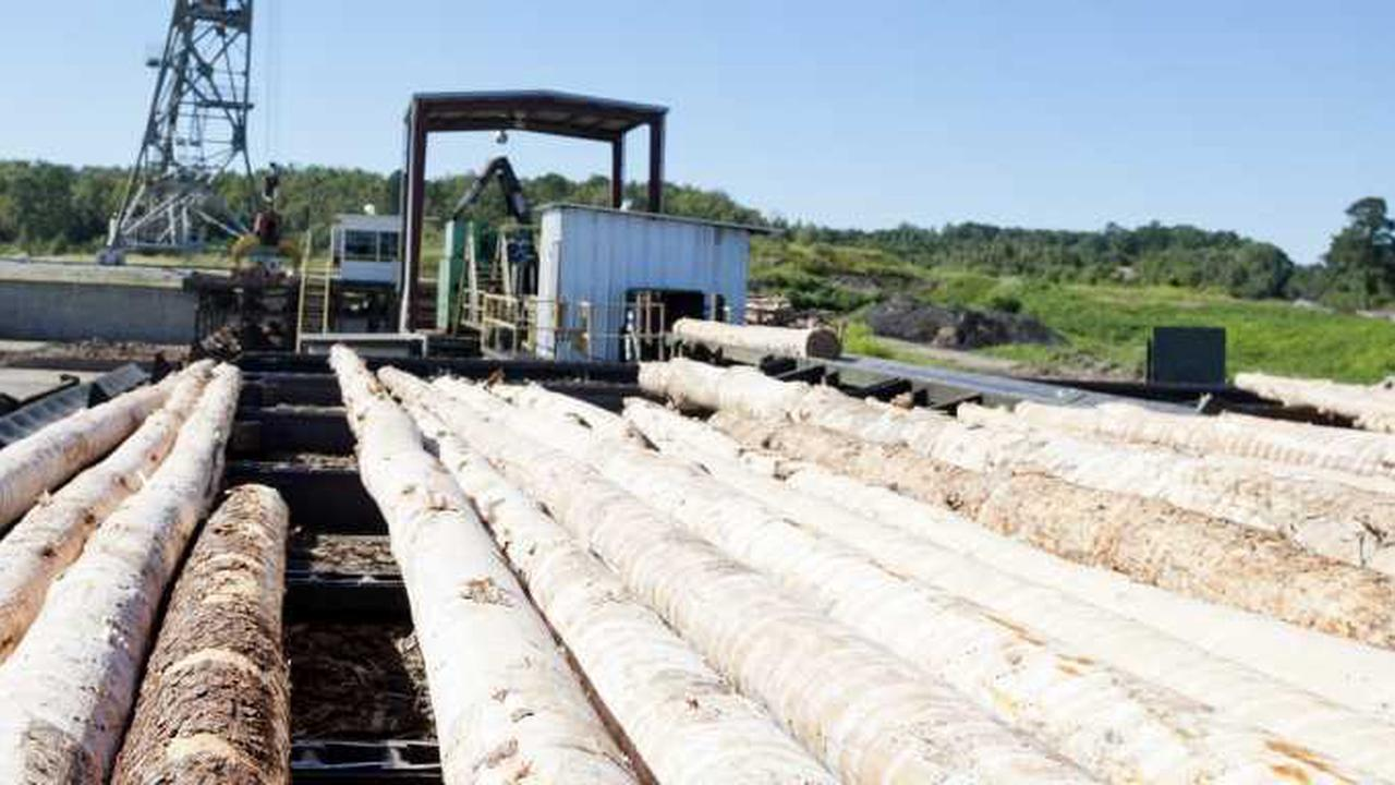Jasper Lumber Co. expanding facility, creating 60 news jobs in Walker County