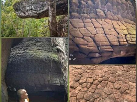 Here is 5 pictures of a Snake That Turned into a Stone: OPINION