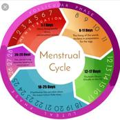 5 Things That Every Lady Should Know About Menstruation Cycle