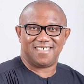 OPINION: Peter Obi will be invincible in 2023 if he picks this former Big Brother housemate