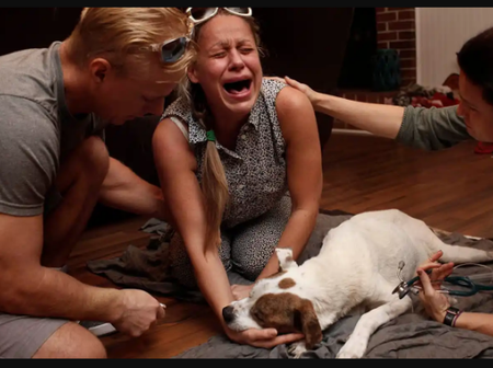 Sad Photos Of People Crying After Their Cats And Dogs Died