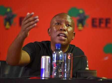 'Julius Malema Passion For The ANC Is Deep' Tito Mboweni Reveals