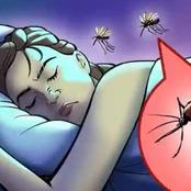 Why Mosquitos Sing Close To Your Ears And How You Can Stay Away From It