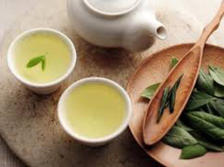 Why you should start drinking White Tea