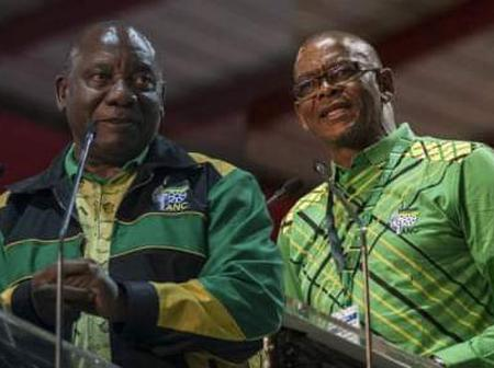 We All Know That Thumamina Wanted Senzo Mchunu as SG of the ANC - Opinion
