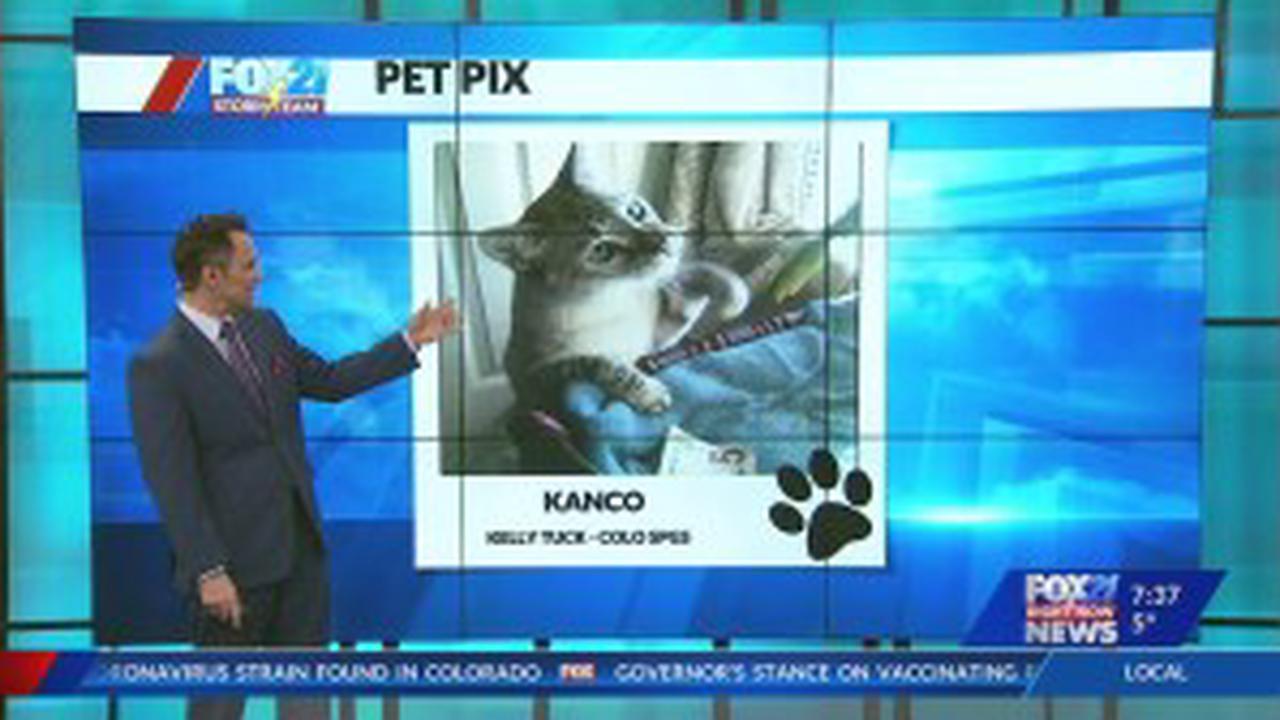 December 30 Pet Pix